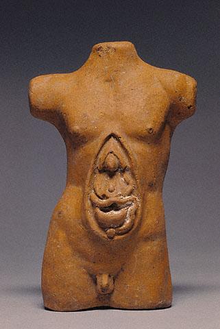 Male open torso model.